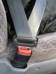 seatbelt-1314338