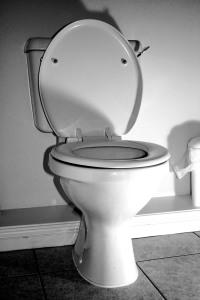 toilet-1526495-1280x1920